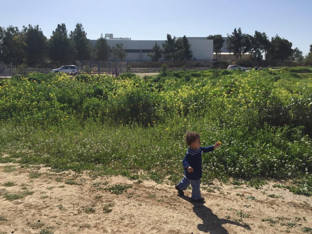And she's off!  Grace running near kibbutz Be'eri